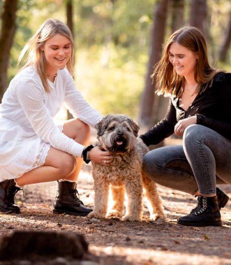 Zusjes doen hartverscheurende oproep: 'Wie heeft onze hond doodgeschopt?'