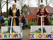 Uitslag optocht Hooge Mierde 2017