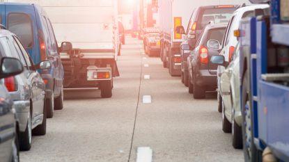 Vertraagd verkeer op E314 in Maasmechelen door grote politieactie in Nederland