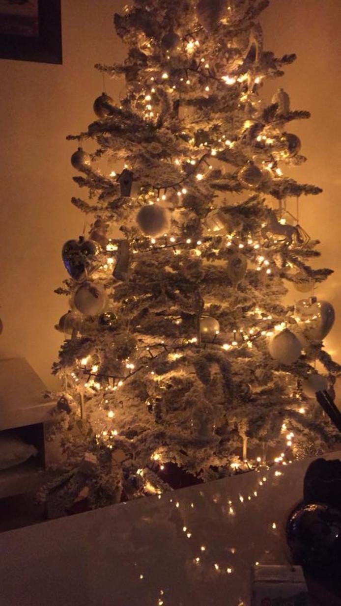 Christel Schutte is er ook vroeg bij. Zij stuurde ook een foto van haar kerstboom in.