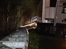 Vrachtwagen wijkt uit voor overstekend dier en raakt van de weg, A59 weer open