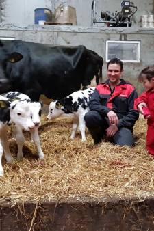 Een perfecte drieling geboren; dat is een primeur voor de familie Schellekens in Goirle