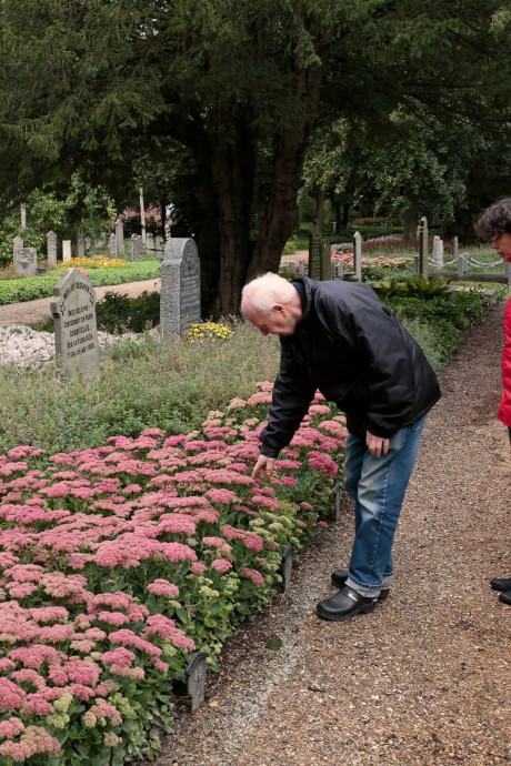Website over oude begraafplaats in Rockanje dingt mee naar prijs