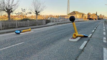 Verkeerspaaltjes op Gentse Steenweg sneuvelen opnieuw: deze keer niet door auto's maar door vandalen