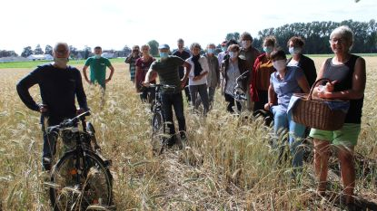Toekomst Reesinghe Maldegem: 100 huizen en 17 hectare openbaar bos