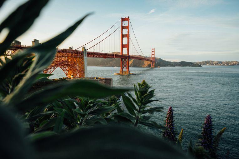 San Francisco, VS.