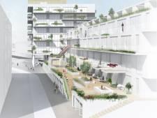 Delftenaren ageren tegen bouwhoogte flat