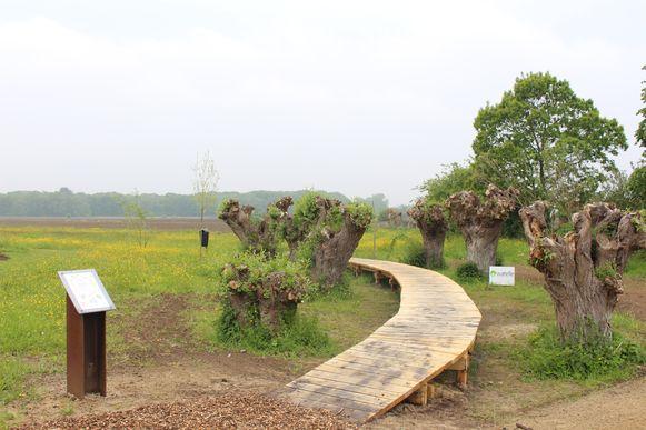 Bijenvriendelijke tuin in Damme