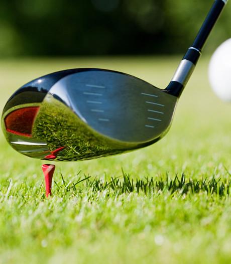 3 jaar cel voor halfdood slaan van Pool in Holten met golfclub