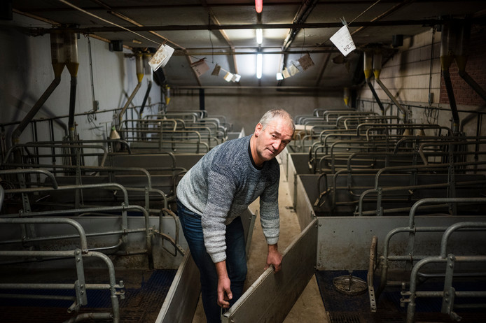 Willy Wolfkamp werd recent als varkenshouder failliet verklaard en is nu actief als asbestsaneerder.