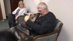 Duitse herder redt leven van baasje tijdens beroerte
