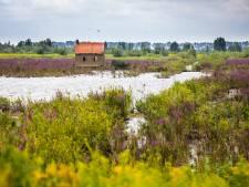 Natuurliefhebbers opgelet: Tiengemeten is vanaf maandag weer te bezoeken