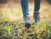26 september: Emergis organiseert een wandeling voor mensen die te maken hebben gehad met een zelfdoding in Wemeldinge