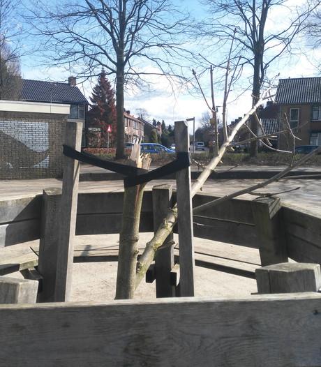 Er komt geen nieuwe Anne Frankboom in Doesburg