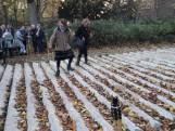 Nieuw kunstwerk Utrecht heeft ook ecologische functie