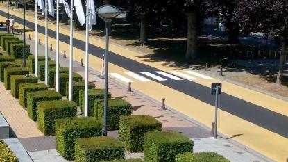 Nog zebrapaden en fietssuggestiestroken, en dan zitten werken in Heyvaertlaan er definitief op