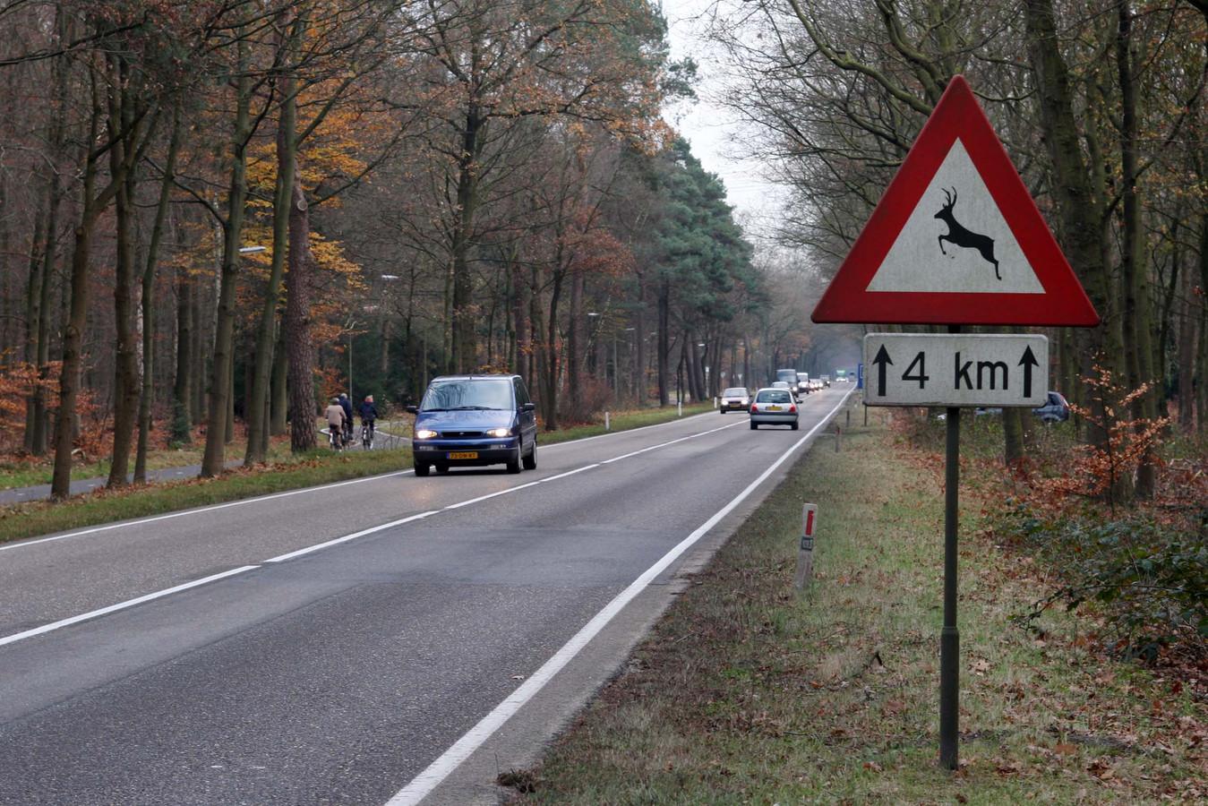 Op de Veluwe verdubbelde het aantal aanrijdingen met wilde zwijnen.