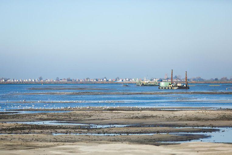 De eerste zandbanken van Strandeiland worden zichtbaar in  het IJ. Beeld Eva Plevier