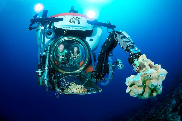Lisa Becking bestudeert als marien bioloog het leven in zee, van sponzen tot zeeschildpadden. Hier is ze aan boord van de duikboot. Beeld Barry Brown
