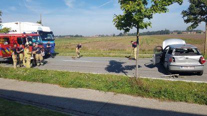 Brandweer bevrijdt bestuurster uit auto na aanrijding door vrachtwagen op Zedelgemsesteenweg