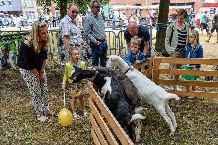 De geitjes hebben vooral oog voor de ballon van het meisje.