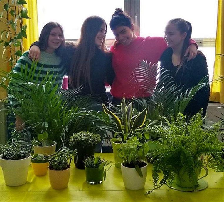 Campus De Reynaert opent een plantenasiel