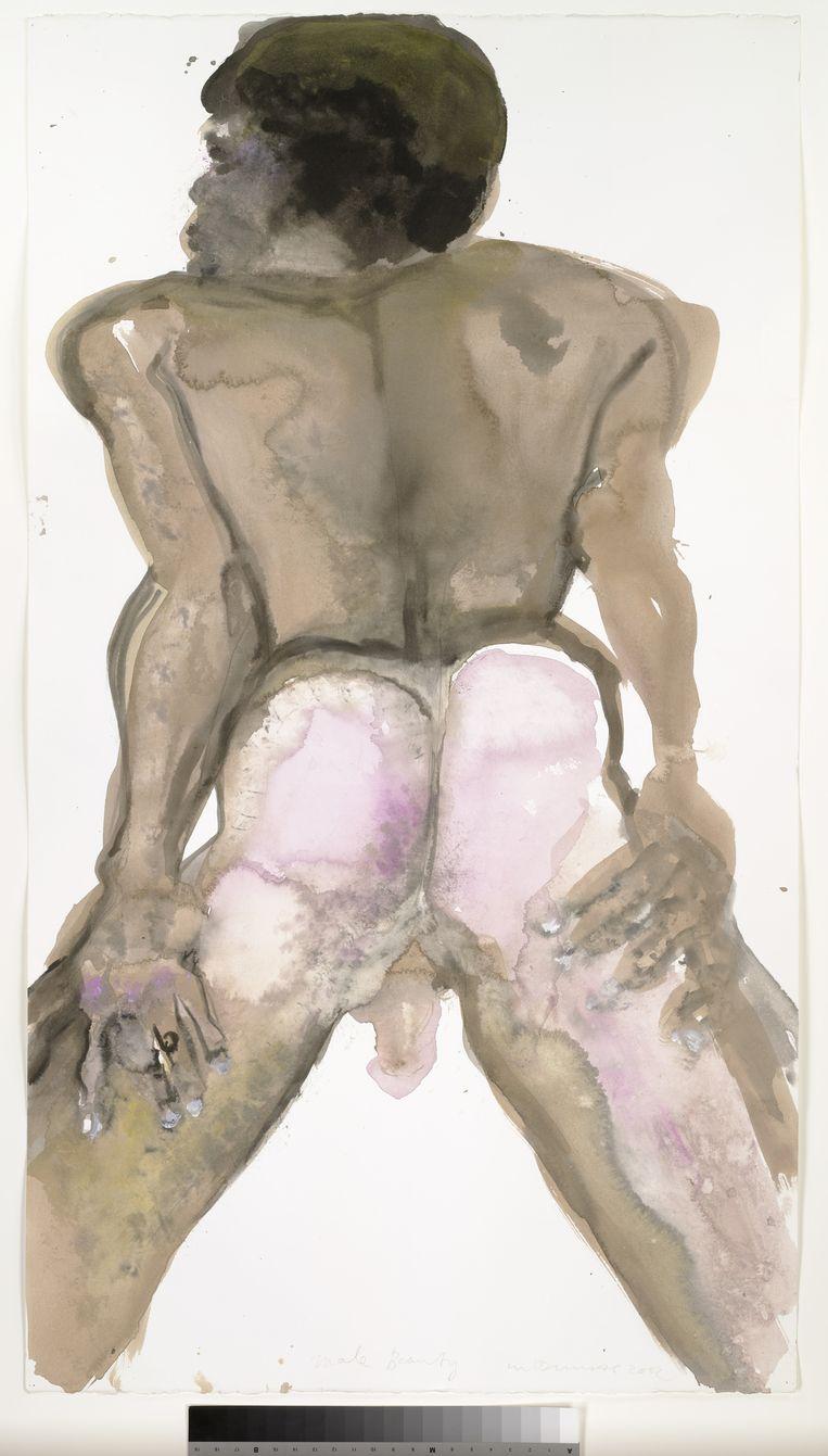 Male Beauty van Marlene Dumas. Beeld null