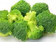 Waarom veel supermarkten momenteel geen broccoli hebben