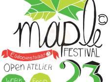Nieuw festival van creatieve ondernemers en studenten in Zwolle