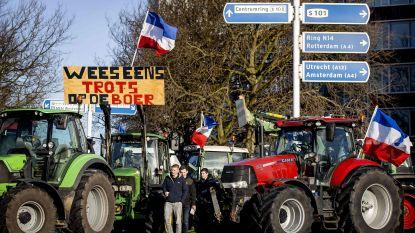 Boeren protesteren opnieuw tegen stikstofbeleid van Nederlandse regering
