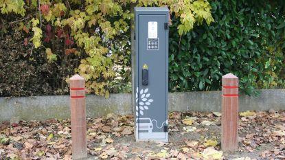 Stadsbestuur wil elf laadpalen voor elektrische voertuigen plaatsen in Groot-Halle