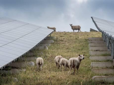 Groene strijd in buitengebied Wageningen