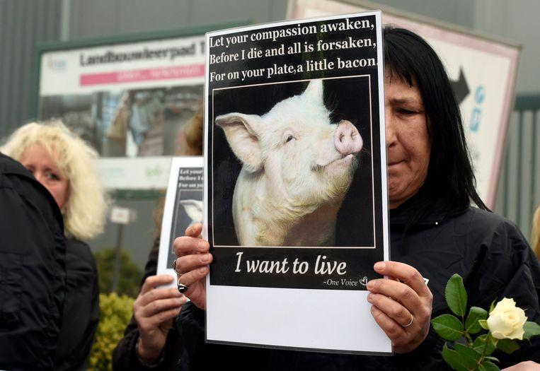 Een lid van Animal Rights tijdens een protest aan het slachthuis.
