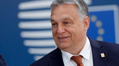 Orban wil korte metten maken met Europese subsidies voor vluchtelingen-ngo's