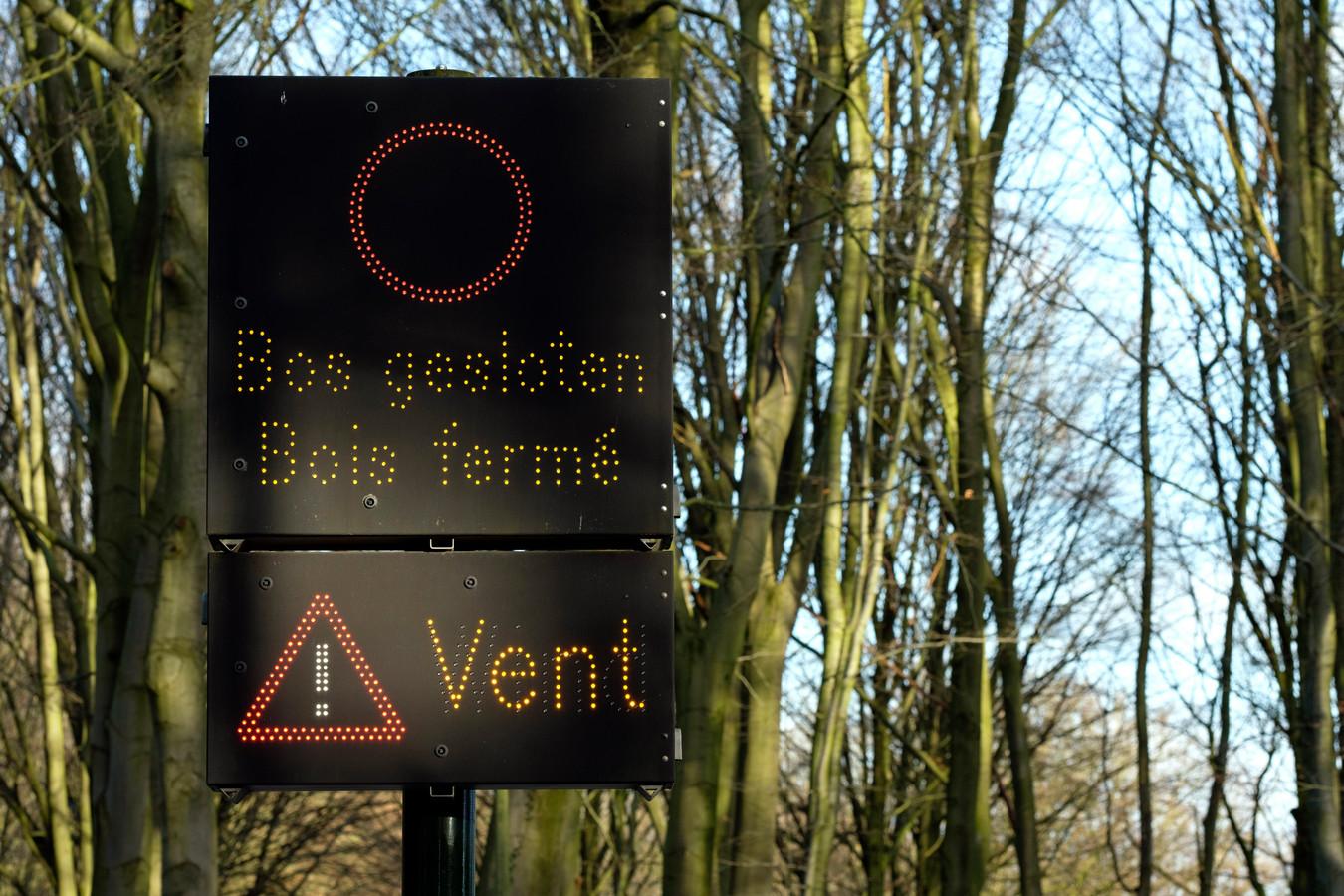 Le Bois de la Cambre à Bruxelles, ce lundi 10 février.