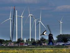 College Oss wil 13 windmolens in Lithse polder: 'Eindelijk duidelijkheid'