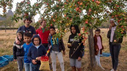 Habbekrats jongeren helpen Velt en Voedselteam met redden van 2 ton fruit in boomgaarden