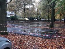 Burgemeester wil illegale parkeerplaatsen Driebergen niet