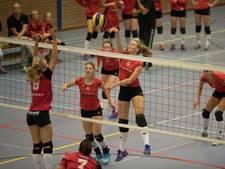 Volleybalsters De Bevers toch naar eerste divisie