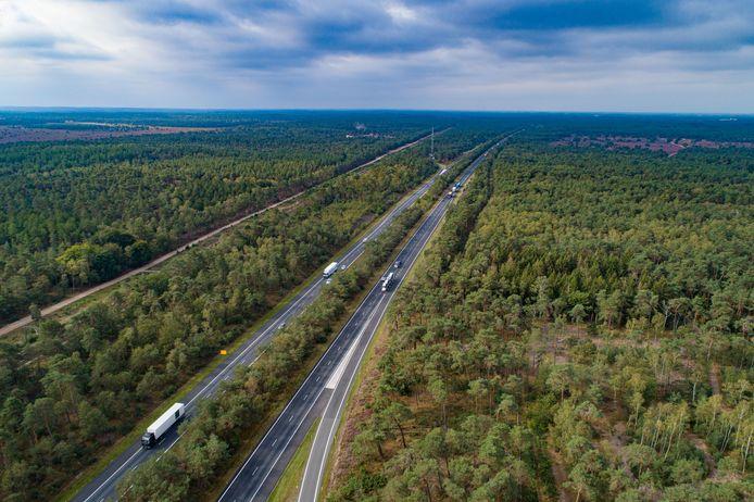 Een deel van de A28 tussen Nunspeet en Wezep. Er zijn plannen om de bebossing langs de route flink uit te dunnen.