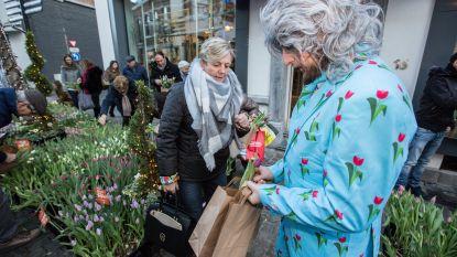 Gratis 10.000 tulpen geplukt in twee uur