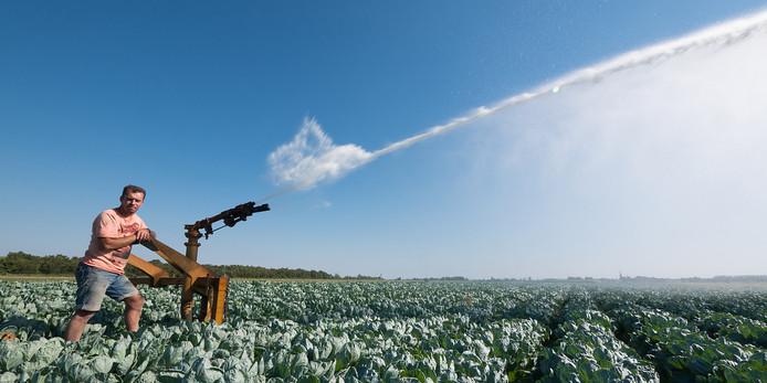 Boeren moeten hun land besproeien.