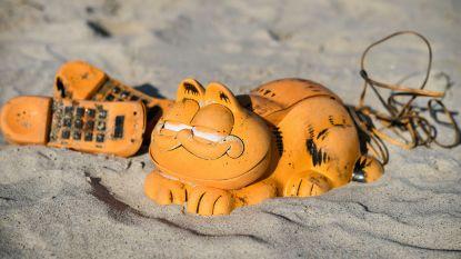 Mysterie van aangespoelde Garfield-telefoons eindelijk opgelost