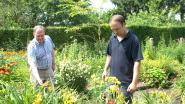 Bloemenwedstrijd vervangt traditionele bloemenstoet in Ternat