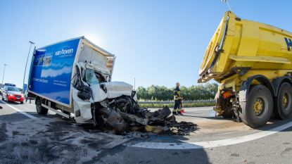 Bestelwagen rijdt in op file: bestuurder overleeft klap niet