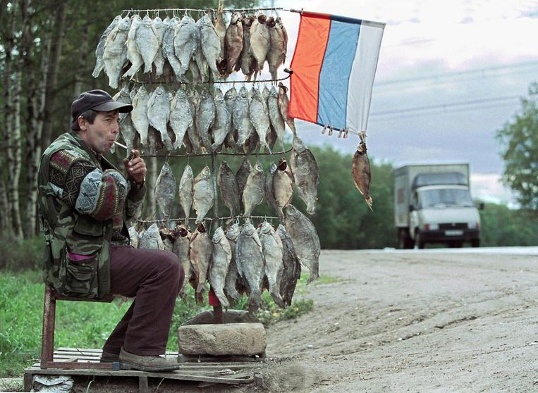 Een man verkoopt vis op de weg van Moskou naar Dmitrov. Beeld epa