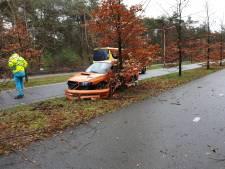 Automobilist rijdt onder invloed boom uit grond in Zeist