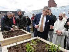 Groenten groeien straks op dak van moskee