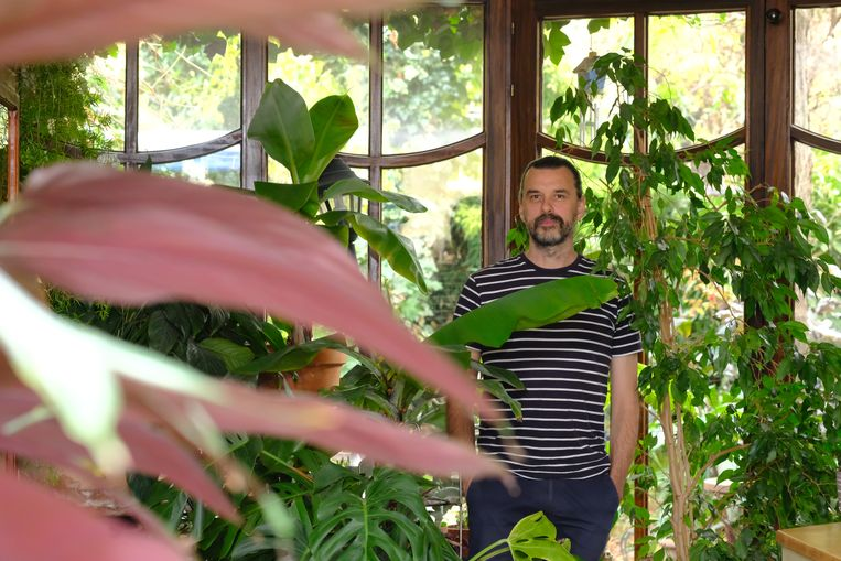 Manu Claeys woont in een rijwoning in Borgerhout met véél groen.