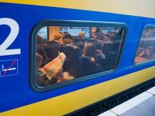 Treinverkeer hervat tussen Utrecht CS en Driebergen-Zeist na aanrijding